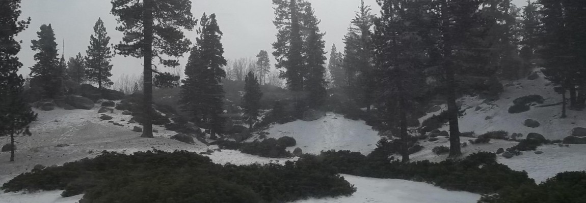 Big Bear Snow 2