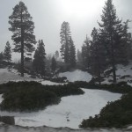 Big Bear Snow 2 image