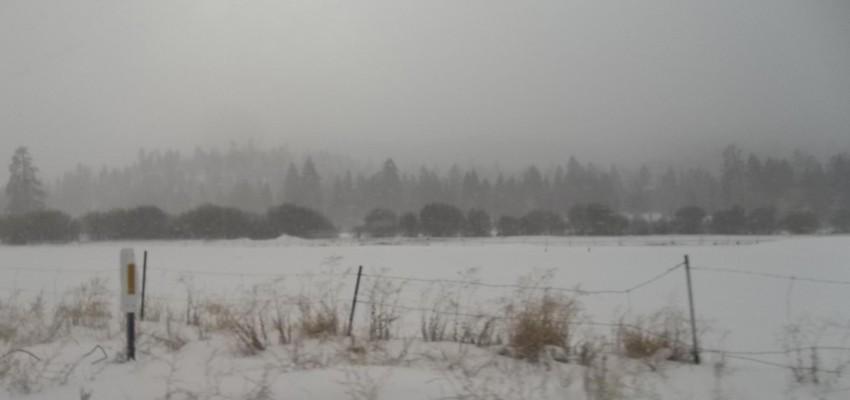 Big Bear Snow 11