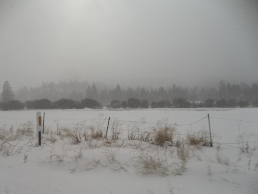 Big Bear Snow 11 image