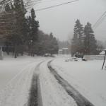 Big Bear Snow 3 image
