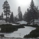 Big Bear Snow 2 image